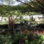 Budget accommodation in Margaret River